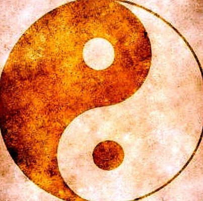 Lo yin e lo yang dell'ordinamento moderno