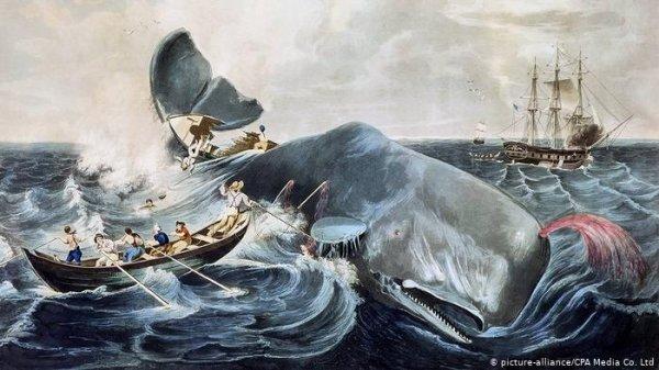 Melville, la forza del destino