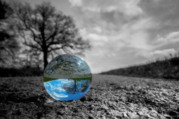 Il virus stermina-ambientalisti