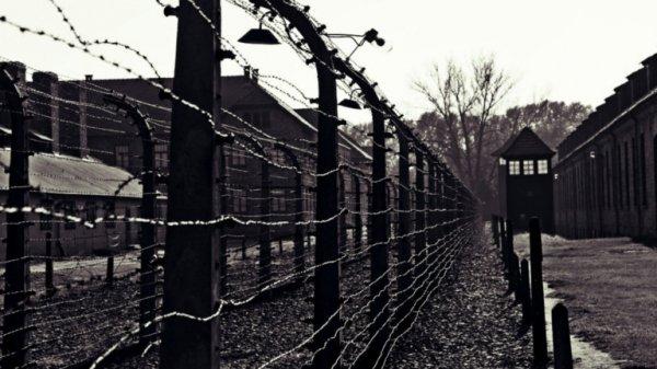Ritorno da Auschwitz