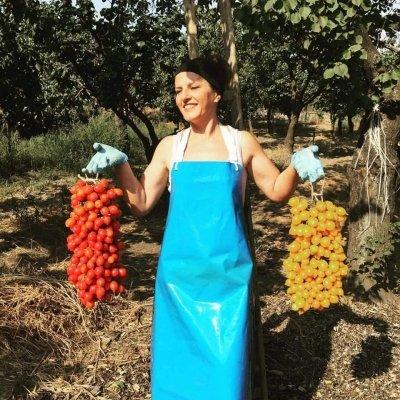 """Lettera di una contadina al ministro Bellanova: """"Lei piange in tv, purtroppo io piango tutti i giorni da sola da due mesi"""""""
