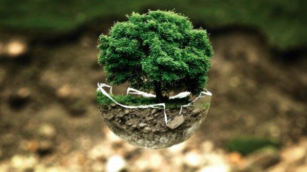 Ministero per la Transizione ecologica?