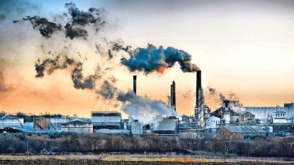 """La """"crescita verde"""" è una contraddizione in termini: è impossibile"""
