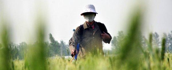 Pesticidi, il pianeta sta perdendo la sua biodiversità. È in atto un'estinzione di massa