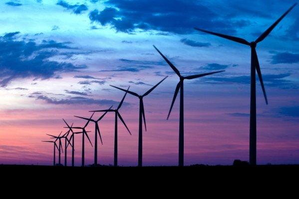 """Il mito della """"crescita verde"""" porterà al collasso ecologico"""