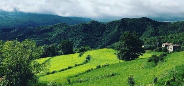 L'agricoltura naturale può salvare il mondo