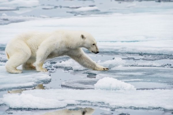 Riscaldamento globale, indifferenza totale: i dati sono catastrofici, ma in Italia non interessa a nessuno