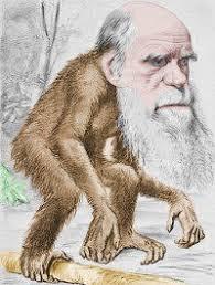 Darwinismo? Sempre meno accoliti