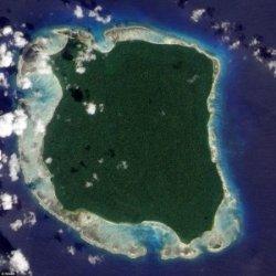 Come gli animali introdotti dall'uomo hanno devastato la flora e la fauna delle isole oceaniche