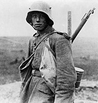 La Germania volle davvero la guerra del 1914?