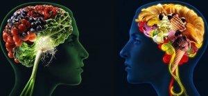 Due opposte filosofie per ristabilire la salute