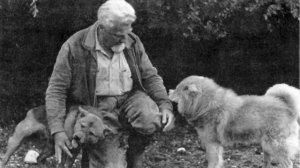Konrad Lorenz e il declino dell'uomo (senza ecologia)