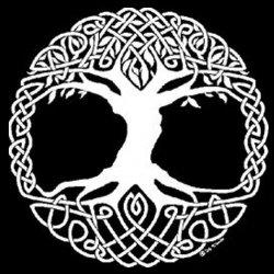 Il Mito Arboreo e i diritti dei vegetali