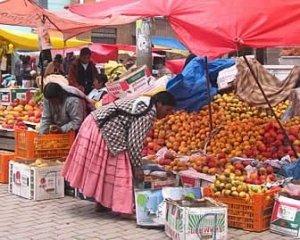 Fondamenti della politica ambientale in Ecuador e Bolivia