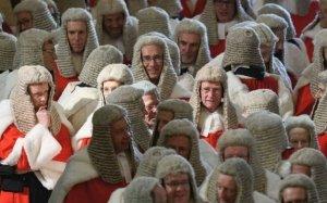 La carica dei 60 professori contro il governo