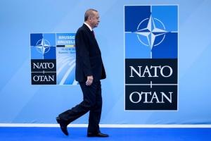 Che cosa ci fa la Turchia nella Nato?