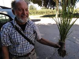 Bioregionalismo e riequilibrio ecosistemico con metodi naturali
