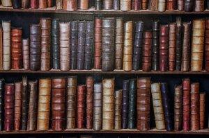 La letteratura non corregge il mondo