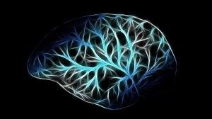 Fisica quantistica: la scienza oltre la materia