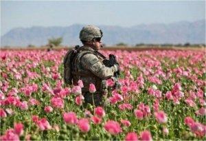 Afghanistan: cosa hanno ottenuto gli Usa?