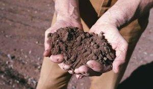 Se l'Agricoltura 4.0 ha tre T: Terra-Tecnologia-Tradizione