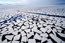 Il cambiamento climatico è colpa dell'uomo e abbiamo cominciato 180 anni fa