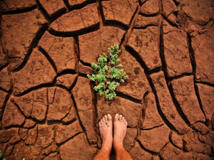 Madre Terra e l'impronta ecologica maldistribuita