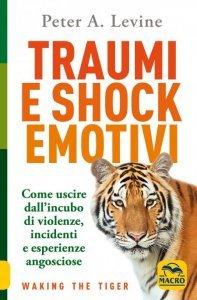 Traumi e Shock Emotivi USATO - Libro