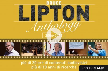 Lipton Anthology - On Demand